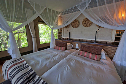 オカバンゴ・チョベ国立公園