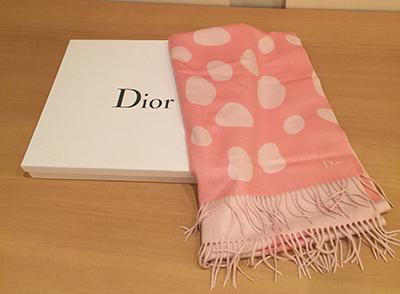 Reversible muffler by Dior